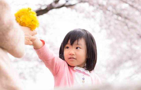 敬老の日2016・プレゼント花・おすすめ