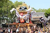 播州秋祭り・穴場