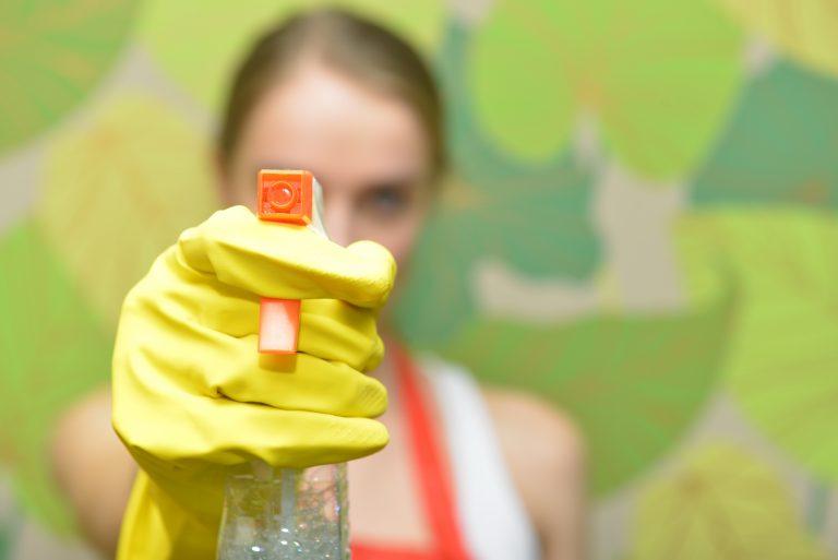 カビの掃除方法